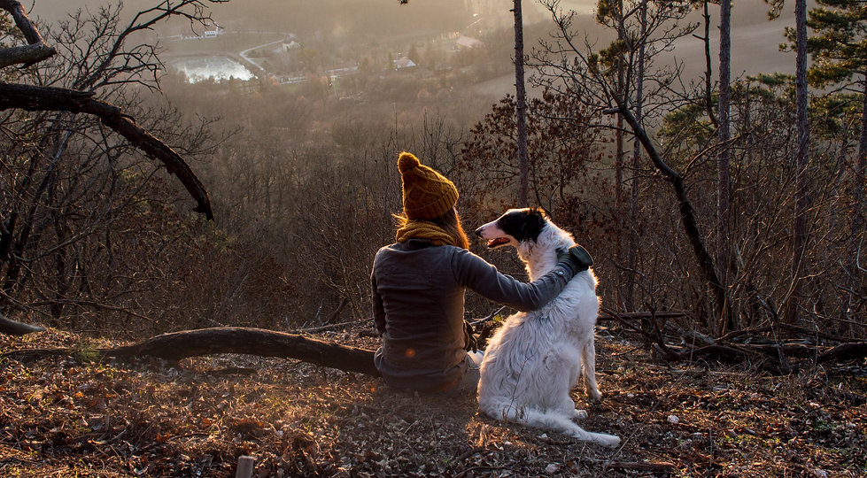 Girl sitting with dog in forest with beautiful view_edited.jpg