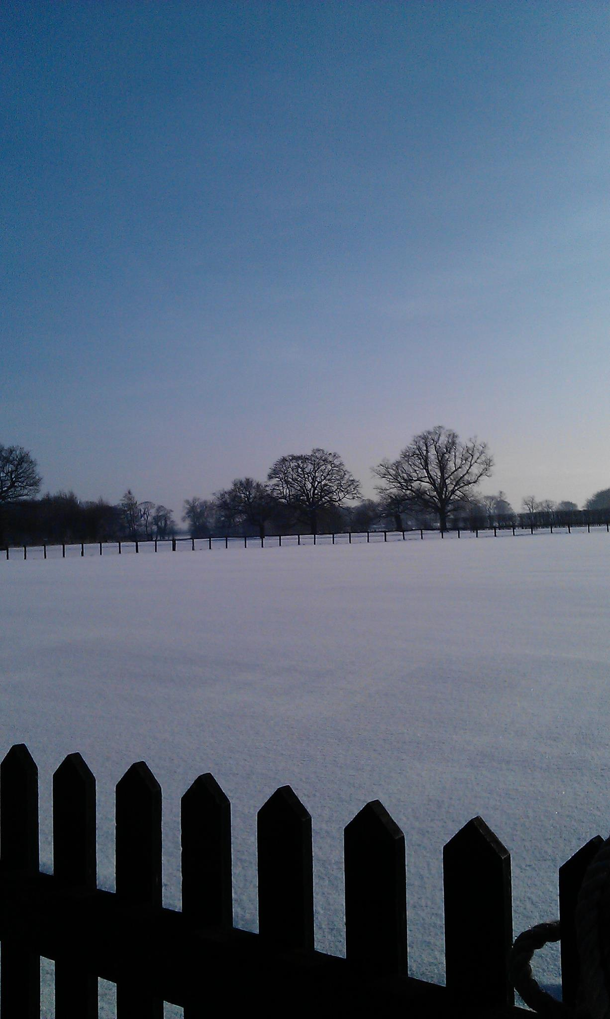 Winter at Alne CC