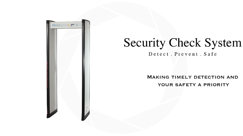 Security Check System.png