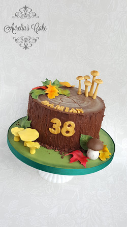 Forest/Fall cake.