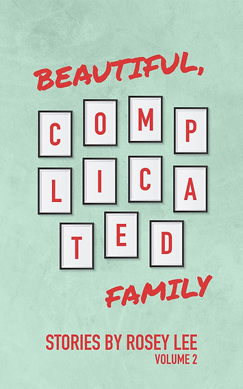 Beautiful, Complicated Family: Volume 2