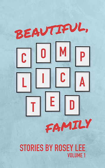 Beautiful, Complicated Family: Volume 1