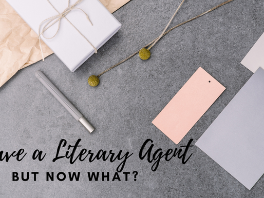 I've Got the Literary Agent; Now what?