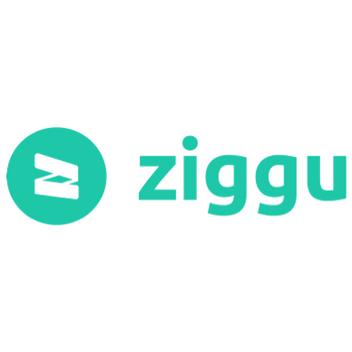 ziggu.png
