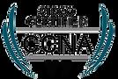 CCNA V7.png
