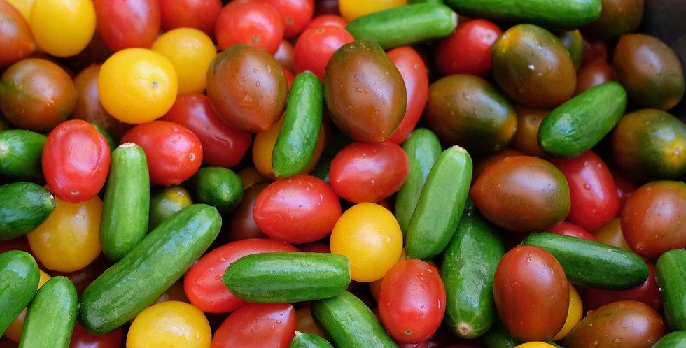 Freshburst Tomatoberries