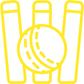 CricketIcon.png
