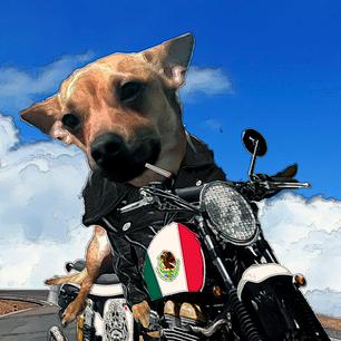 Dog Biker inked.png