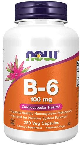 Vitamin B-6 100 mg Veg Capsules- 250 caps