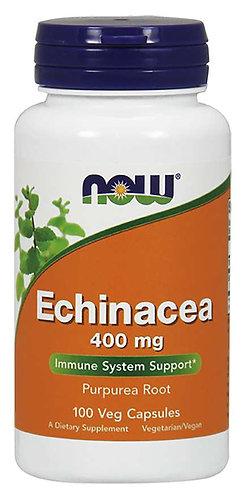 Echinacea 400 mg Capsules