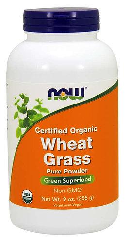 Wheat Grass Powder, Certified Organic