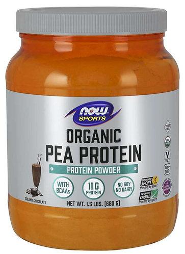Pea Protein, Organic Creamy Chocolate Powder
