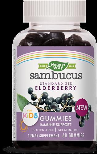 Kids Sambucus Gummies, 60ct