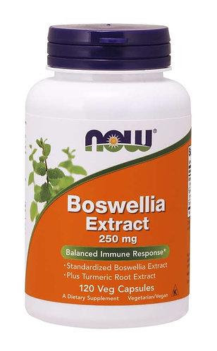 Boswellia Extract 250 mg Veg Capsules