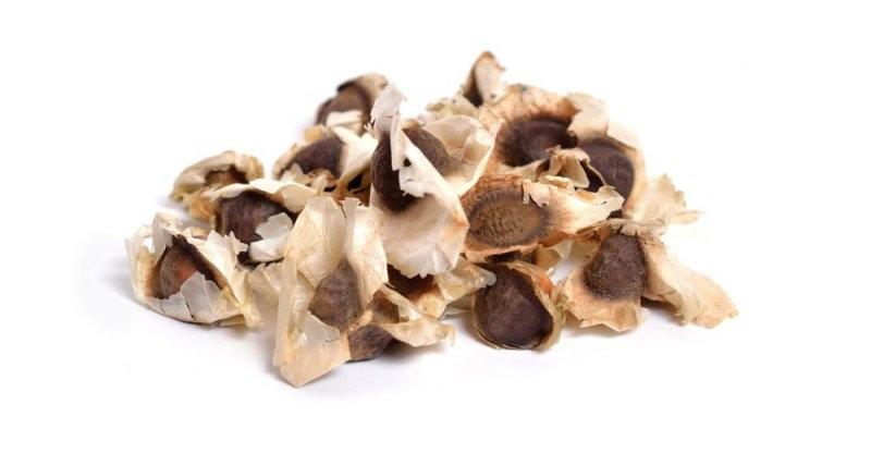 Moringa Seed (50 ct)