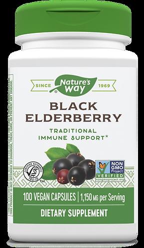 Black Elderberry