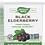 Thumbnail: Black Elderberry