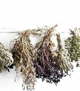 public-domain-health-dried-herbs-medicin