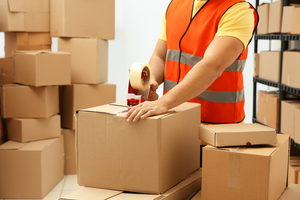 Best Packers and Movers in Arjun Garh