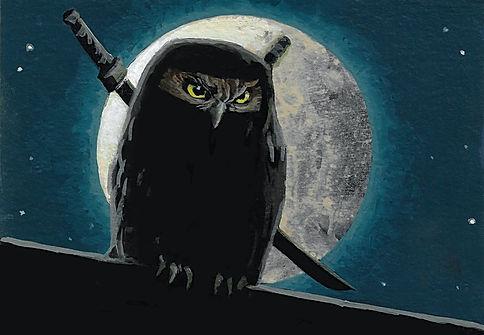 ninja ruru.jpg