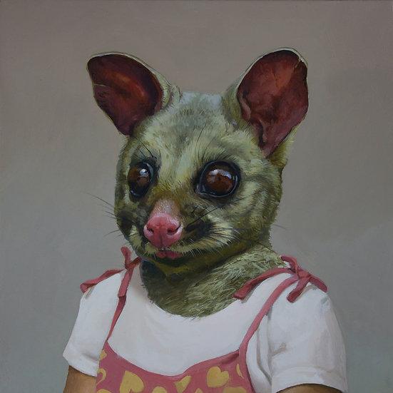Little Possum