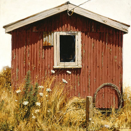 Portrait of a Shed