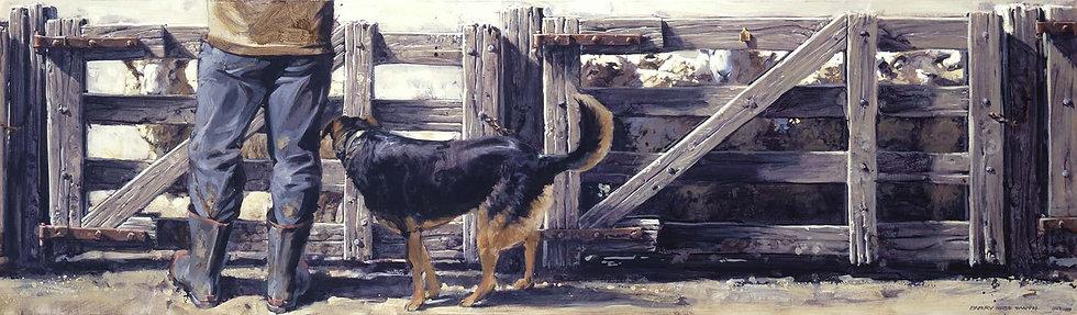 Dog Tucker