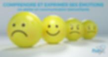 comprendre-les-emotions_atelier-en-commu