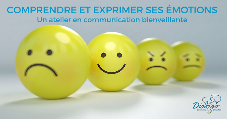 comprendre-les-emotions_atelier-en-commu