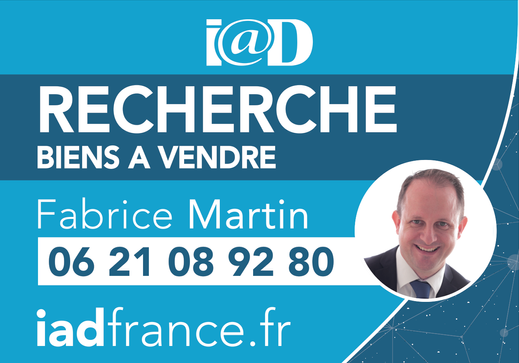 IAD FRANCE FABRICE MARTIN