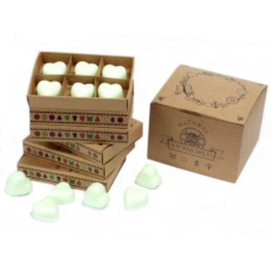 Box of 6 Wax Melts -  Mint & Menthol