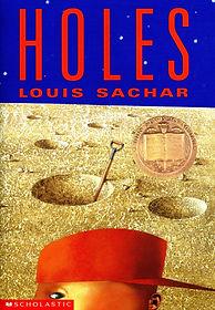 holes book image.jpg