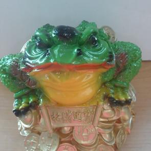 жаба на деньгах большая