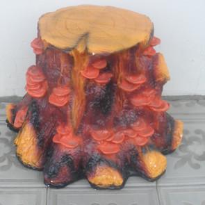 пень с грибами