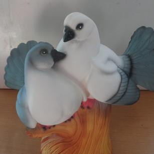 голуби серые