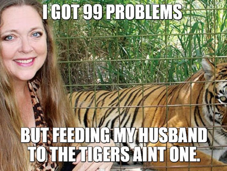 20 Carole Baskin Netflix Tiger King Memes | They're Great!