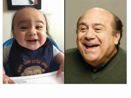 20 Danny Devito Memes | A Little Laughter For The Day