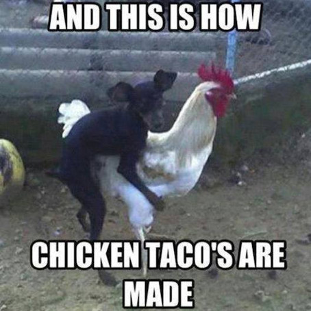 Like Cashew Chicken? | Feast On These Hilarious Chicken Memes