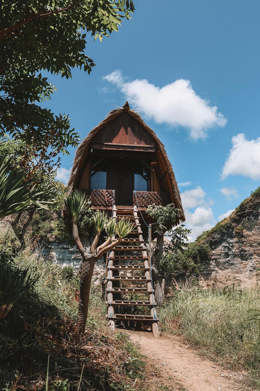 nusa penida kelingking beach t-rex mountain