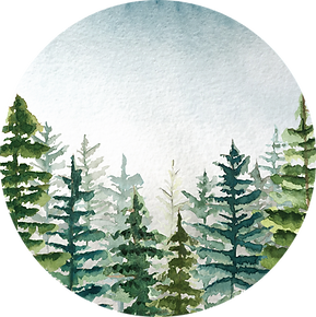 Mystic-mountains_2_image.png