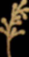 gold_leaf_14.png