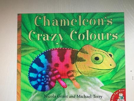 Chameleon's Crazy Colours