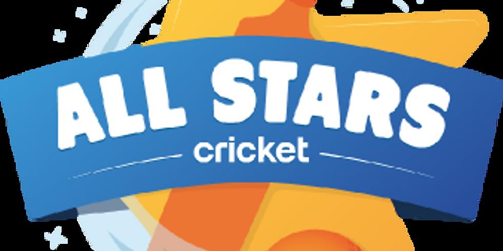 All Stars Cricket: Fairford