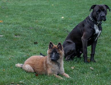 Nayeli und Emil