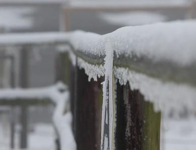 Reitplatz... eingefrorenes A