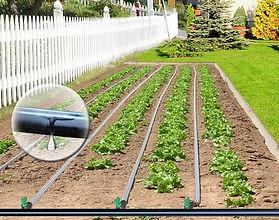 irrigazione3.jpg