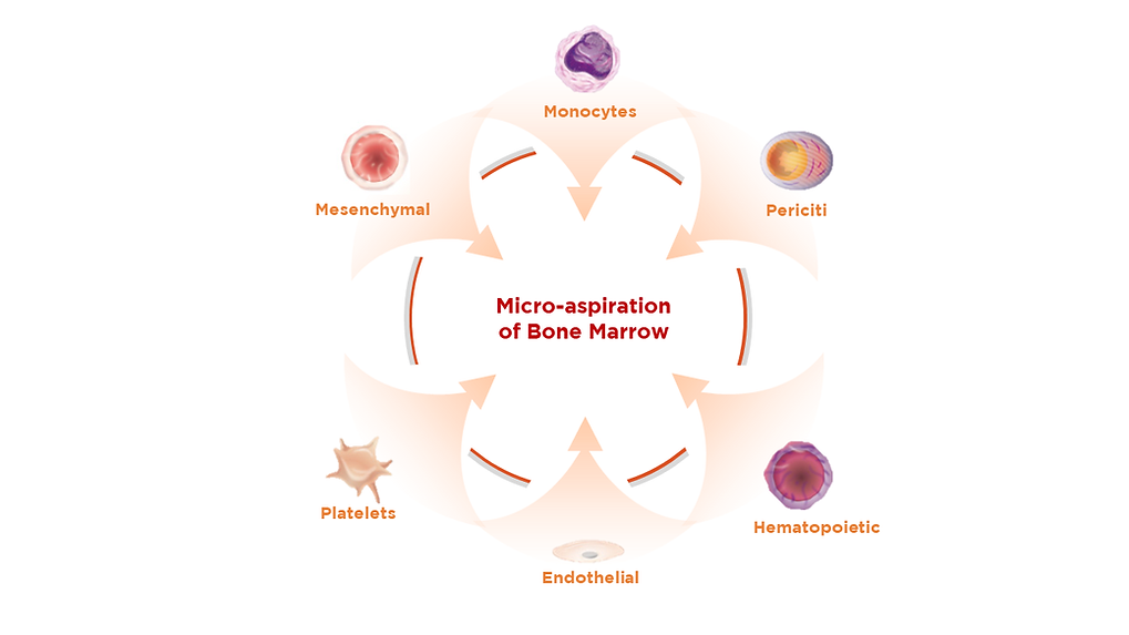Micro-aspiration Cells Types.pptx.png