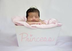 Newborn girl in Princess bucket