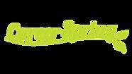 CS_logo_1600x900_transparent.png