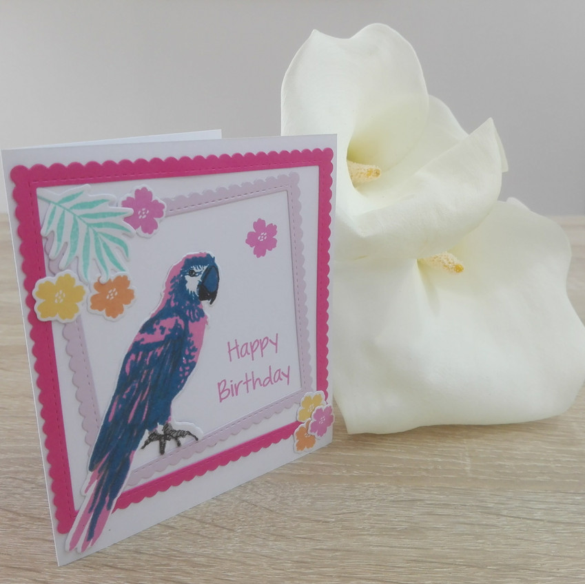 Carte d'anniversaire Perroquet